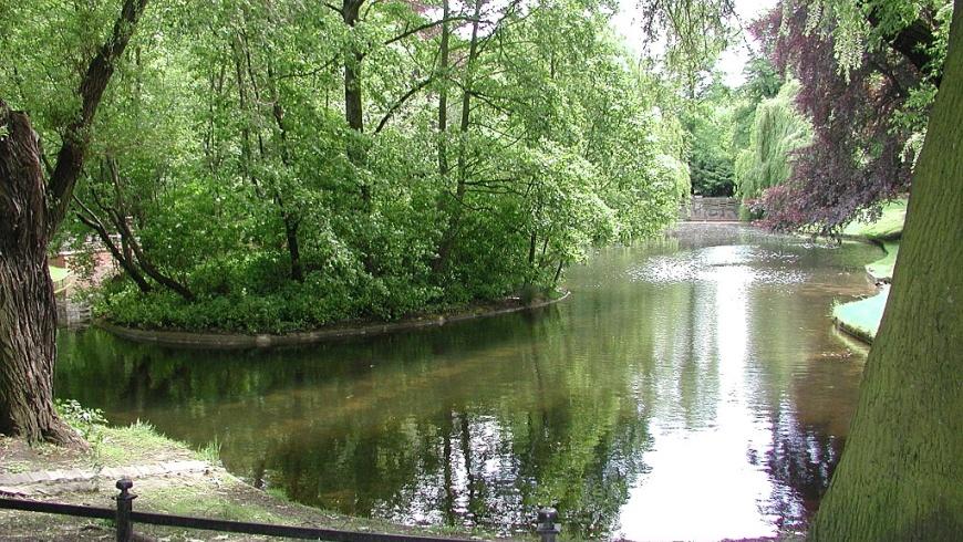Teich im Stadtpark Lichtenberg