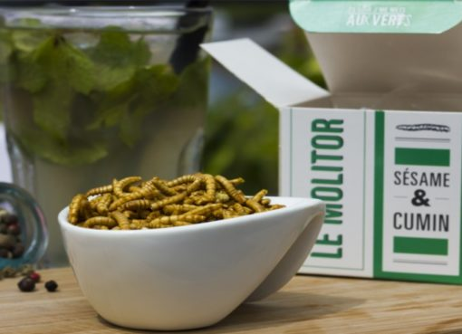 Neu bei Kaufland: Insekten-Food