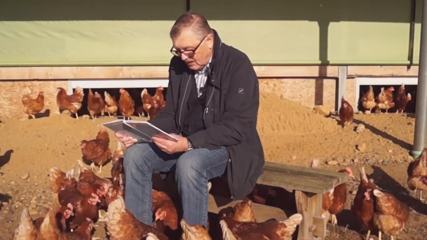 Klaus Hansen liest für 3.000 Hühner